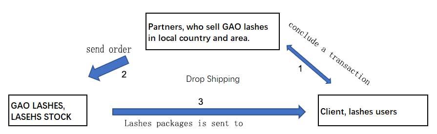 lashes drop ship